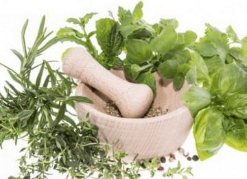 استفاده از گیاهان دارویی